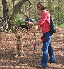 At all times the dog and owner is our priority and we do not just teach exercises but look at behaviour as well