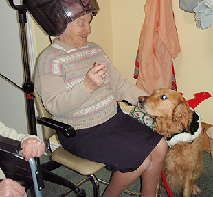 Tip Top Dog School gives it's time regularly to visiting Care Homes,schools and Scout and Beavers