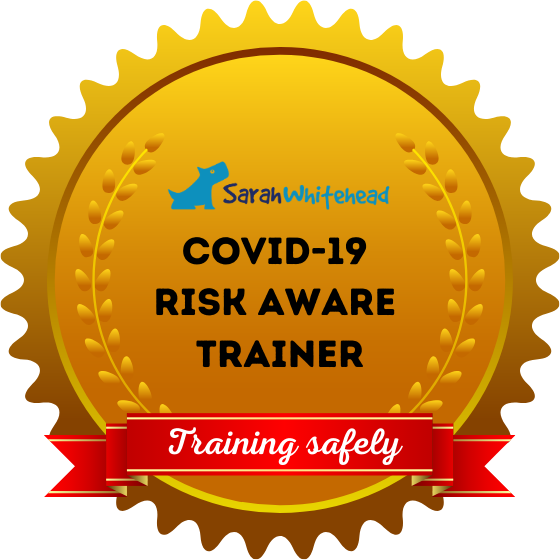 COVID-19 Risk Aware Trainer